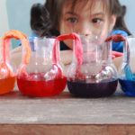 STEM Resources to Explore at Home