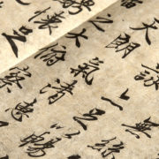 Chinese Exam Typos