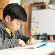 香港中小學中文寫作水平考試預備班